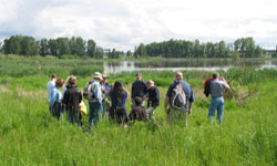 Join the Wetlands Conservancy for an afternoon of exploration and to learn more about urban wetlands, the cool animals and plants that live there. Sun, Sep 16, 2012 1PM-4PM. Info here!