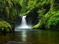 Senior Healthy Hikers: Eagle Creek, Punch Bowl Falls Hike: Tue Oct 28, 2014 8:30AM-3PM<br /> . Info here!