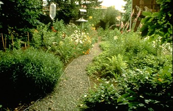 Free Naturescaping Workshop, chemical-free landscaping with native plants: May 7, 2011 9AM-1PM. Info Here!