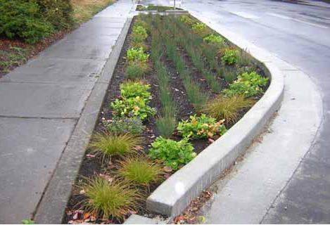 Curb extension planter
