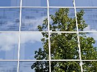 City of Gresham Tree Code Community Forum: Nov 28, 2012 6-8PM. Info here!