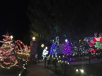 City of Gresham Senior Healthy Hikers, Artback Mural Walk and Christmas Lights Outing: Tue, Dec 18, 2018 1:30PM-8PM. Let's Go Walking!. Info here!